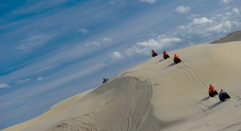 Sand Dune Adventures 旅行社