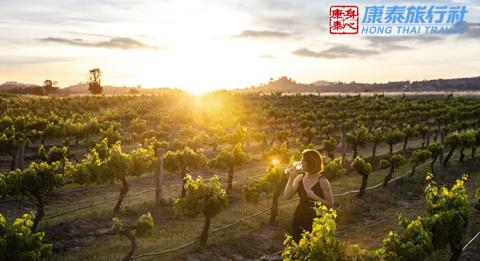 A woman enjoying a glass of wine and the sun set from the scenic grounds of Burnbrae Wines, Mudgee