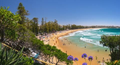 Crowds enjoying a Summer's day at Manly Beach, Manly