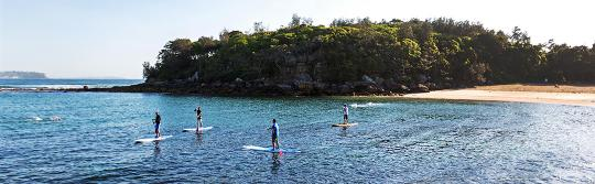 曼利(Manly)雪莉海灘(Shelly Beach)立式單槳衝浪